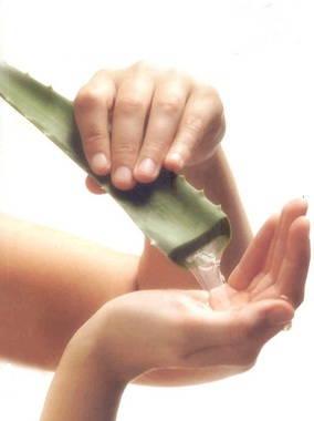 Piel-sana-y-joven-para-todos-los-días-siempre-calambres-musculares-omega-6-3-9-pepino-miel-áloe-vera-leche-letargia-cefalea-convulsiones-parálisis-diuresis-6