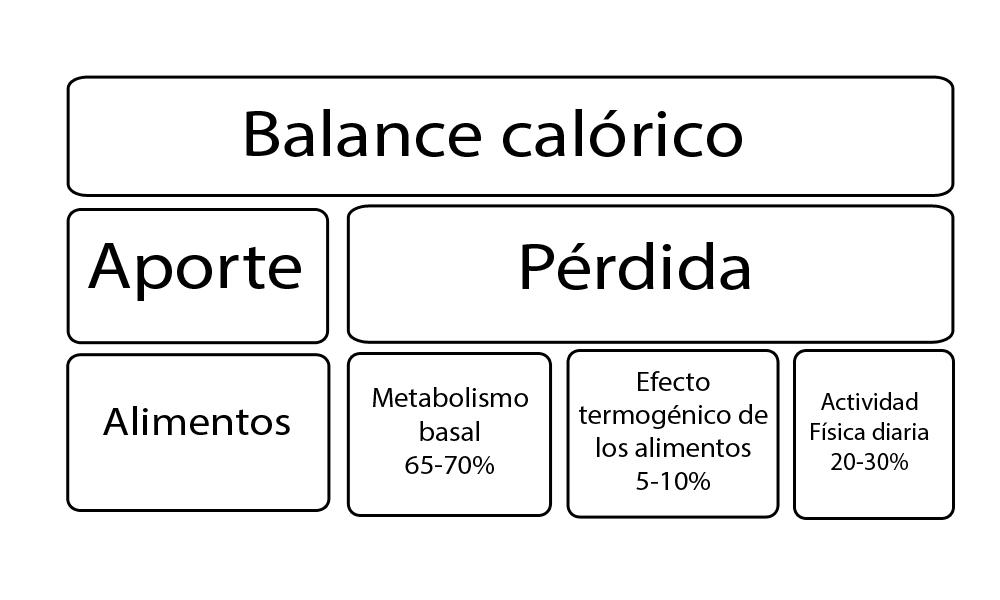 consejos-para-bajar-de-peso-dieta-alimentacion-sana-perder-peso-bajar-de-peso-3
